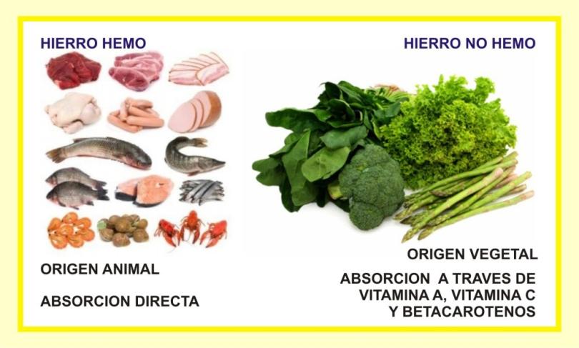 HIERRO-HEMO-NO-HEMO.jpg