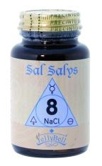 Sal Salys8.jpg