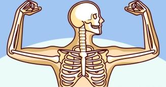huesos-2.jpg