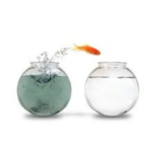 Detoxificacion-y-drenaje-para-comenzar-el-ano-de-manera-saludable-400x320
